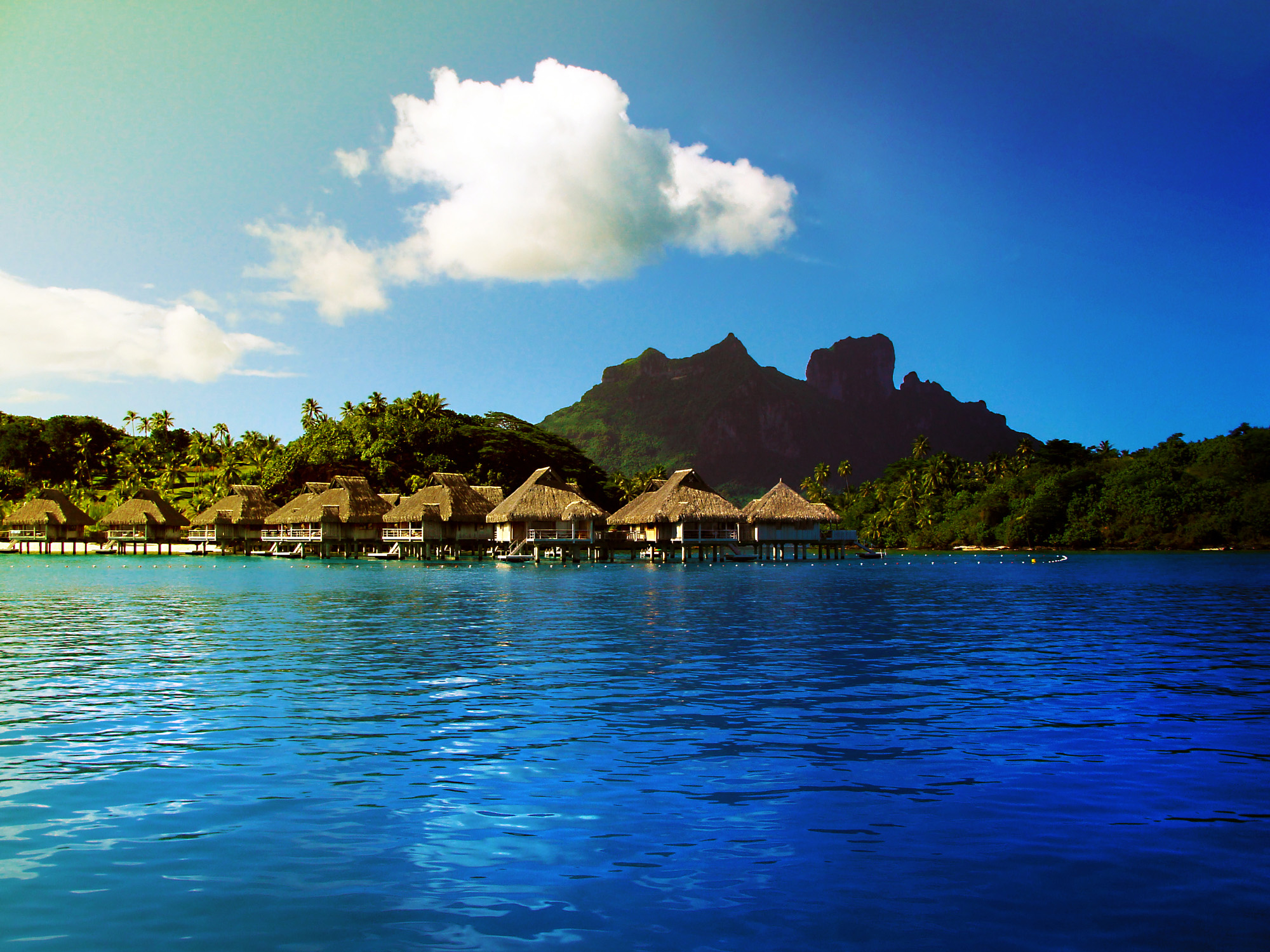 Hd Tropical Island Beach Paradise Wallpapers And Backgrounds: Pictures: Bora Bora, French Polynesia