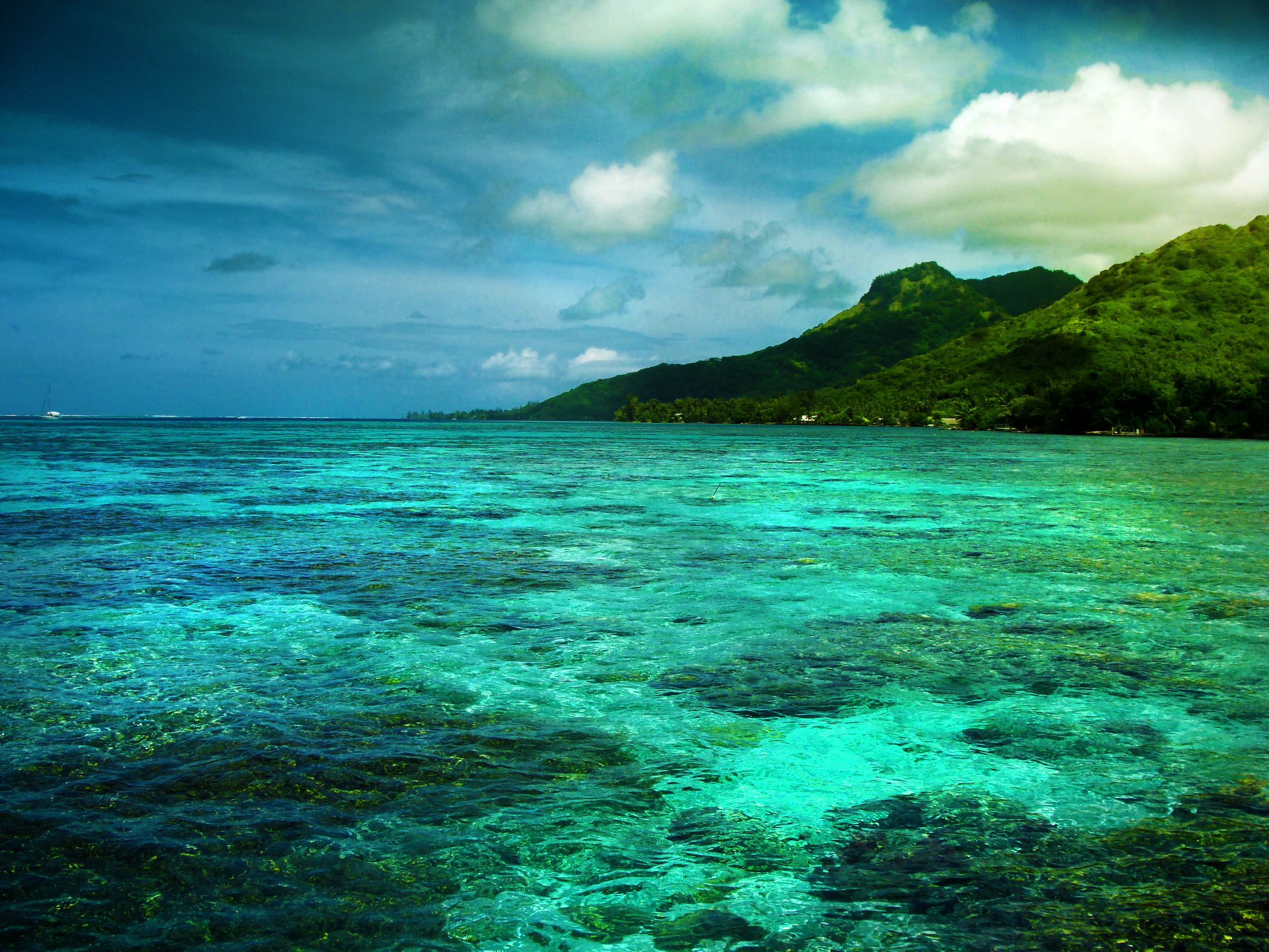Moorea Island French Polynesia  City pictures : Moorea, French Polynesia | Beautiful Places to Visit